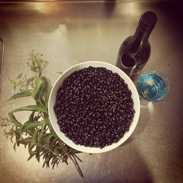 The dry, hot spell has inspired some cordial making. Our blackcurrants have ripened so that seems a logical place to start. But I'm also going to try a Lemon Verbena syrup. Top right is a verjuice gone 'wrong'. Pinot Gris picked too late makes it too sweet for its original use, but it's just delicious made 50:50 with soda water. #FoodFarm #Summer #HotAs