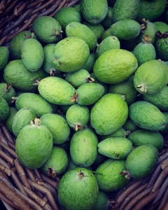 First decent basket of feijoas for us down here onhellip