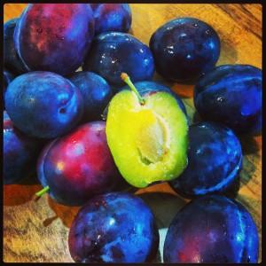 Wild plums.
