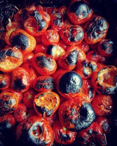 Woodfired oven roasted Cheviot tomatoes Thatll teach em PickedAllTheTomatoes ALLthetomatoeshellip