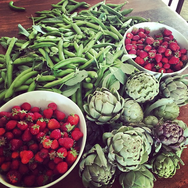 That moment when the garden goes from zero to hero. #FoodFarm #Summer #TheHungryGapIsOver!