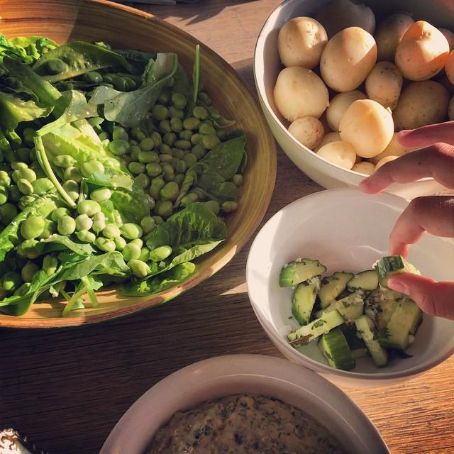 Salad greens, broad beans, new potatoes, first cucumbers. #FoodFarm