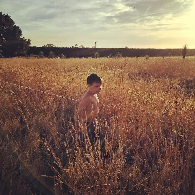 Small boy. Tall grass. #FoodFarm #Summer