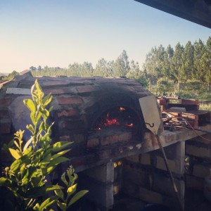 The wood fire oven on The Food Farm