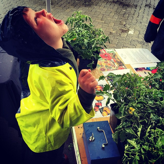 Catching raindrops while selling local heritage tomato plants at the @waipara_valley_farmers_market #FoodFarm #Summer?