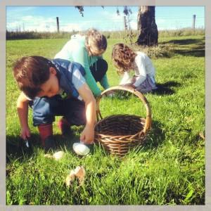 Picking field mushrooms on ANZAC day.