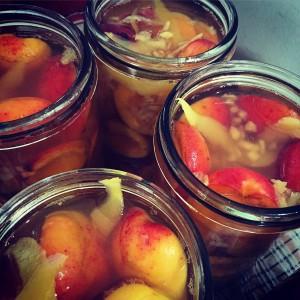 Lemon, honey & ginger apricots